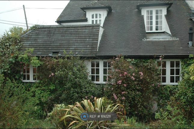 Thumbnail Semi-detached house to rent in Highter Eype Road, Near Bridport