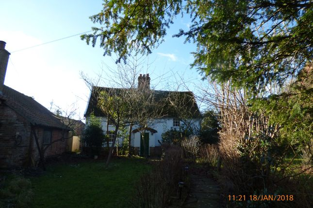 3 bed cottage to rent in Back Road, Wenhaston, Halesworth