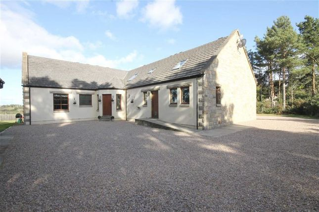 Thumbnail Detached house for sale in Hallowood Road, Elgin