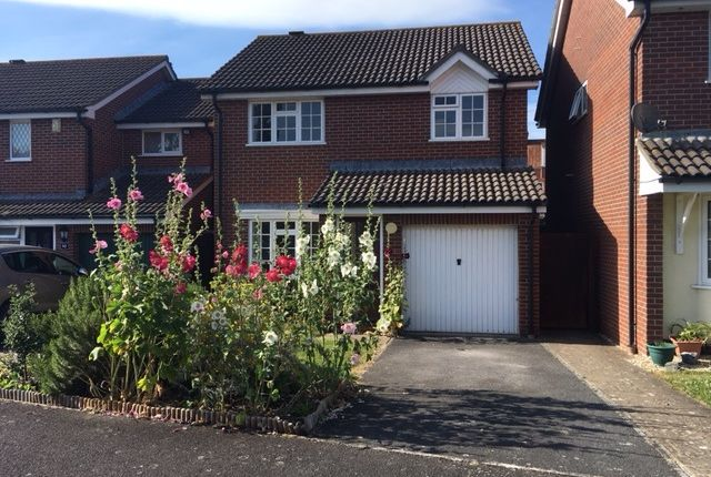 Thumbnail Detached house to rent in Palmers Road, Glastonbury