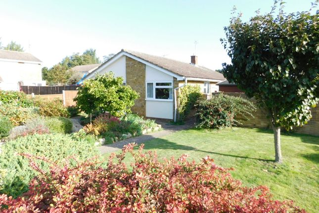 Thumbnail Detached bungalow for sale in Rookery Walk, Clifton, Shefford