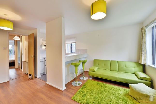 Thumbnail Flat to rent in Dewberry Street, London