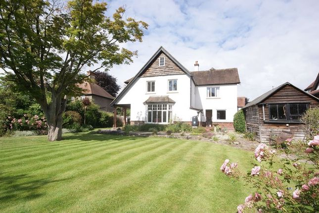 Thumbnail Detached house for sale in Beech Grove, Alverstoke