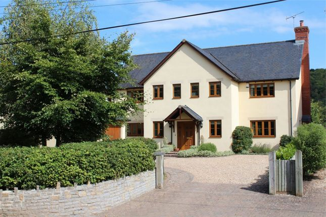Thumbnail Detached house for sale in Cape Grace, Stoke St Mary, Taunton, Somerset