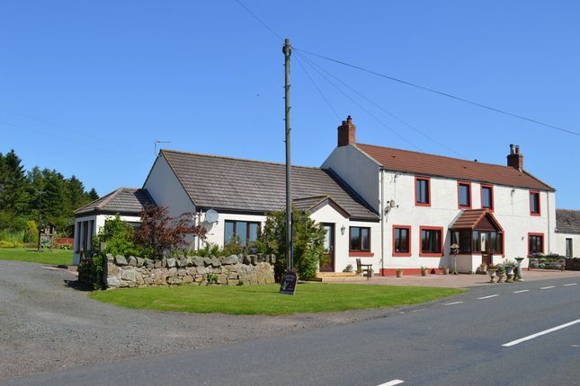 Thumbnail Property for sale in Ford Common, Berwick Upon Tweed, Northumberland