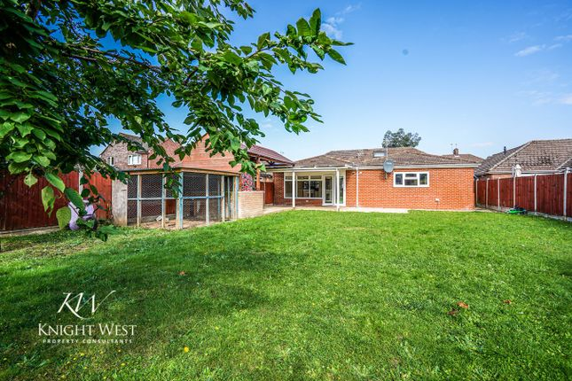 Thumbnail Detached bungalow for sale in Oaklands Avenue, Colchester
