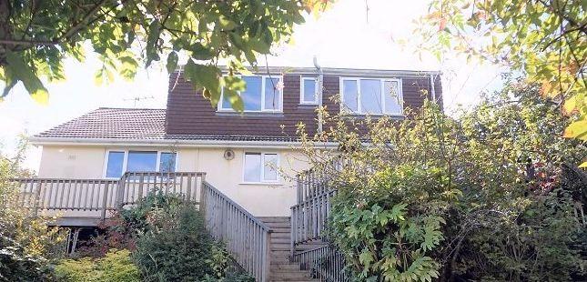 Thumbnail Detached bungalow for sale in Nut Bush Lane, Torquay