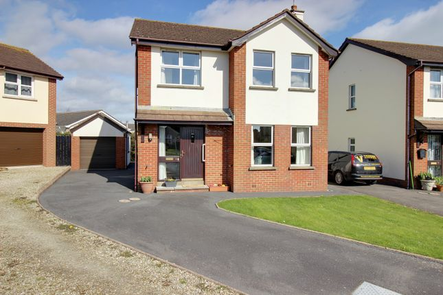 Thumbnail Detached house for sale in Briar Park, Ballywalter