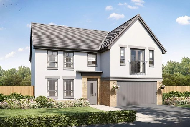 """Thumbnail Detached house for sale in """"Colville"""" at Countesswells Park Place, Countesswells, Aberdeen"""