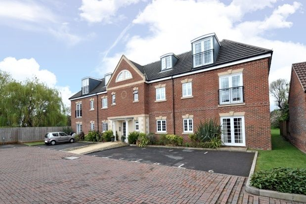 Thumbnail Flat to rent in Wolfe Close, Chichester