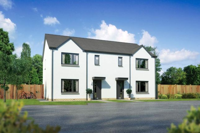 "Thumbnail Semi-detached house for sale in ""Caplewood"" at Whitehills Gardens, Cove, Aberdeen"