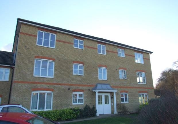 Thumbnail Flat to rent in Grampian Place, Great Ashby