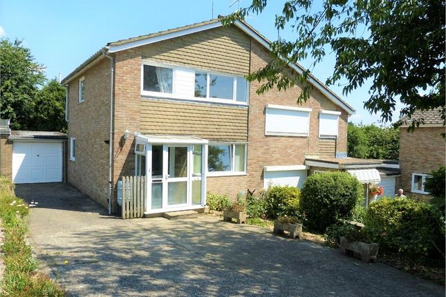 3 bed semi-detached house to rent in Netherfield Close, Alton, Hampshire GU34