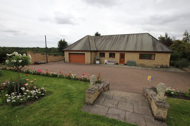 Thumbnail Detached bungalow for sale in Doncaster Road, Darfield, Barnsley