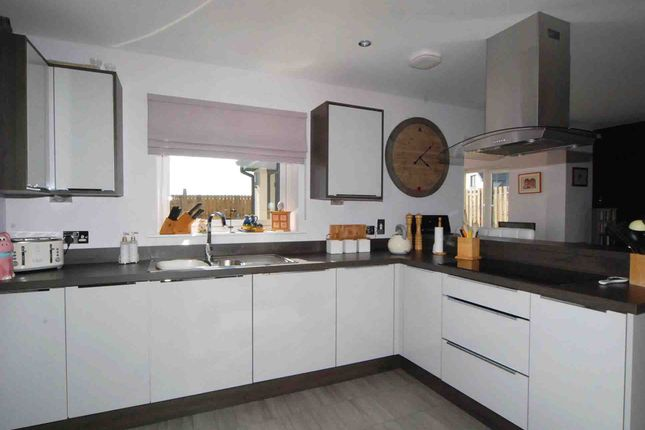 Thumbnail Detached house for sale in Grayhaugh Wynd, Dundee