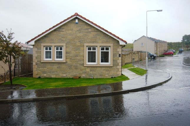 Thumbnail Detached bungalow to rent in Glengask Grove, Kelty