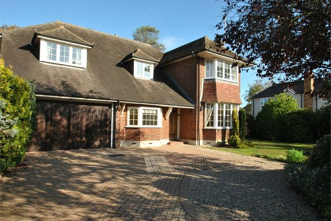 Thumbnail Detached house for sale in Roxwell Road, Chelmsford, Essex