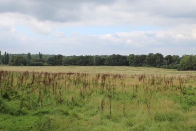 Thumbnail Land for sale in Plots A388, A389, A390 Long Reach, Ockham, Woking GU236Pg