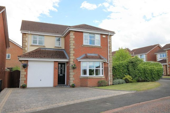 Thumbnail Detached house for sale in Aberwick Drive, Chester Le Street
