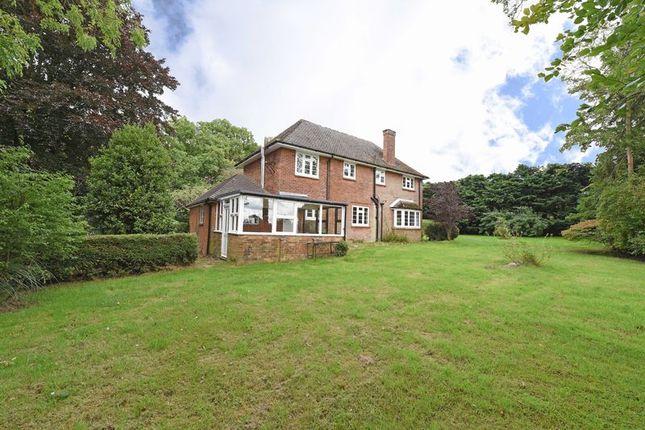 Thumbnail Detached house to rent in Dummer, Basingstoke