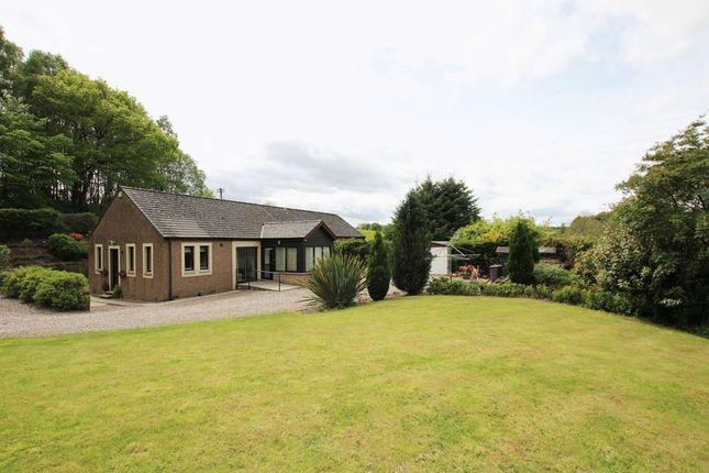 Thumbnail Detached bungalow for sale in Idvies, Forfar