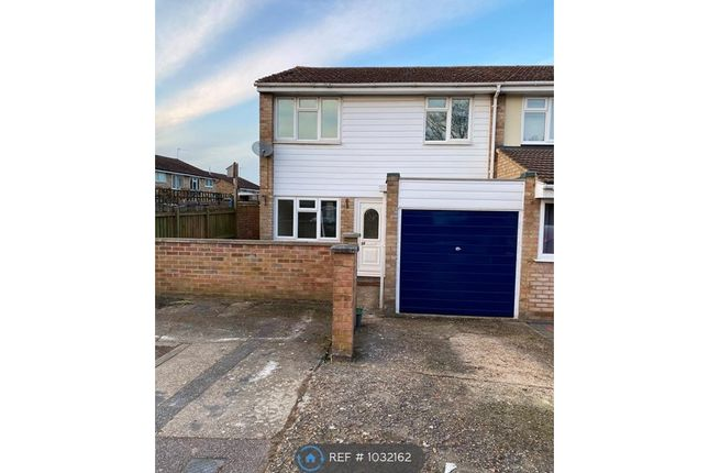 Thumbnail Semi-detached house to rent in Anson Way, Braintree