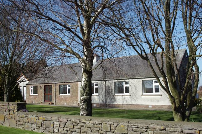 Thumbnail Detached bungalow to rent in Colliston, Arbroath