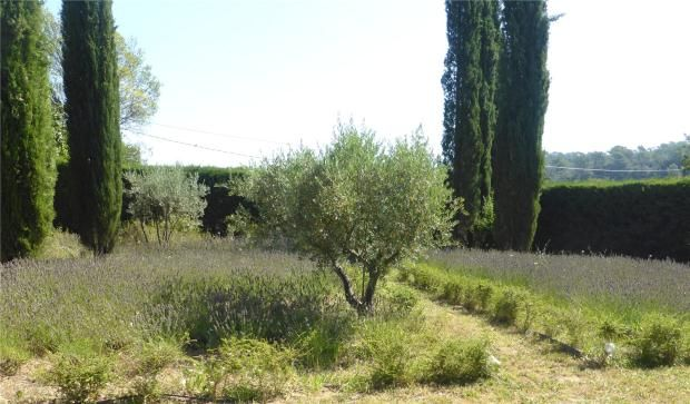 Picture No. 07 of Le Muy, Haut Var, 83490