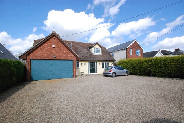 Thumbnail Detached house for sale in Coggeshall Road, Marks Tey, Essex