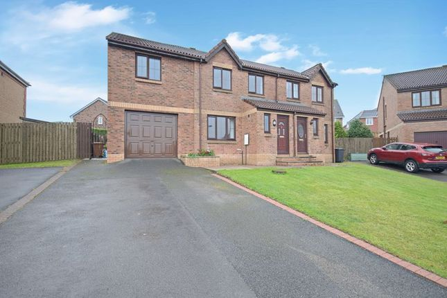 Thumbnail Semi-detached house for sale in Holly Bank, Whitehaven