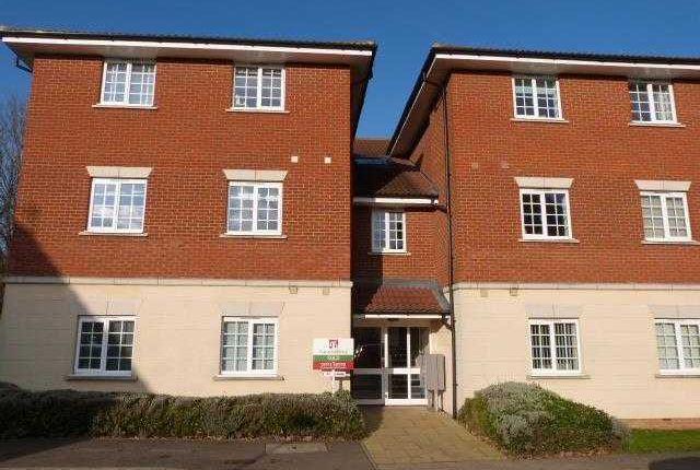 Thumbnail Flat to rent in Ferguson Way, Kesgrave, Ipswich