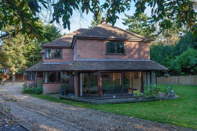 Thumbnail Detached house for sale in The Avenue, Wroxham, Norwich