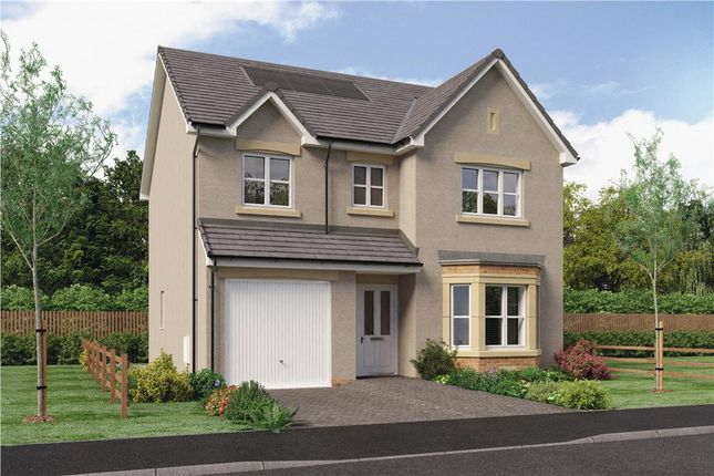 "Thumbnail Detached house for sale in ""Glenmuir"" at Red Deer Road, Cambuslang, Glasgow"