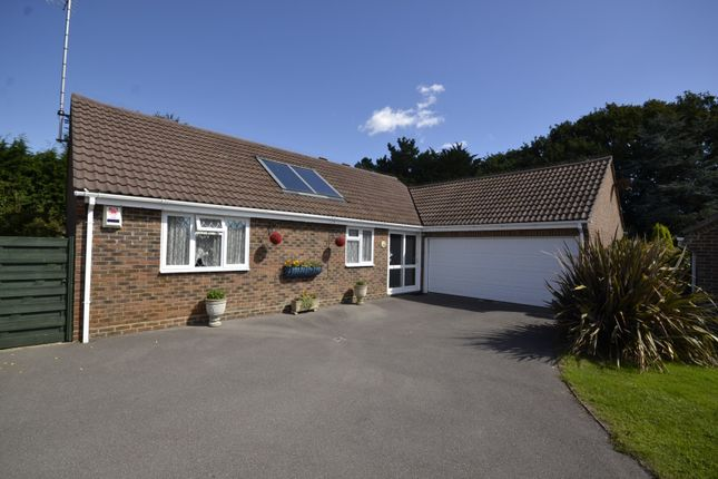 Thumbnail Detached bungalow for sale in Osbern Close, Bexhill On Sea
