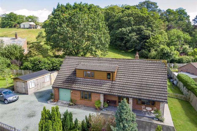 Thumbnail Detached bungalow for sale in Llansantffraid