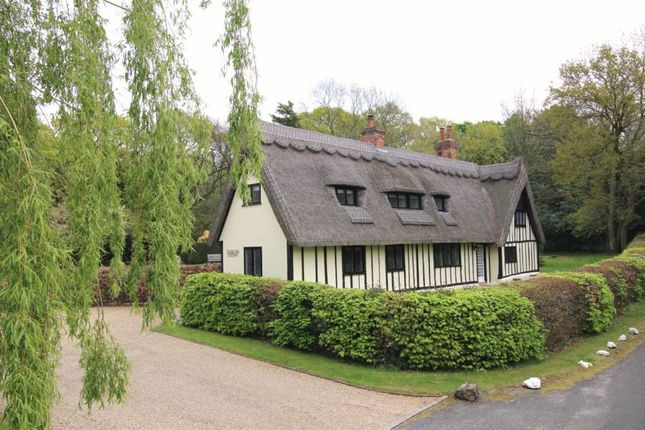 Thumbnail Equestrian property for sale in Heath Road, Little Braxted, Witham, Essex
