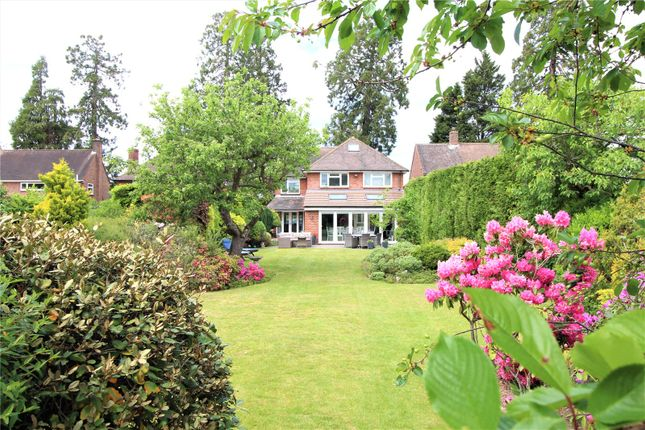 Thumbnail Detached house for sale in Watchetts Drive, Camberley, Surrey