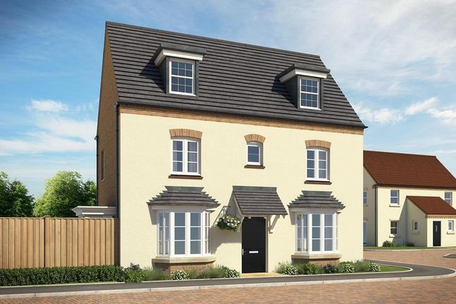 """Thumbnail Detached house for sale in """"Hertford"""" at Austen Drive, Tamworth"""