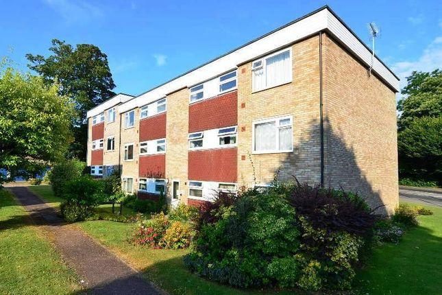 Flat to rent in Heathfield Road, Ashford