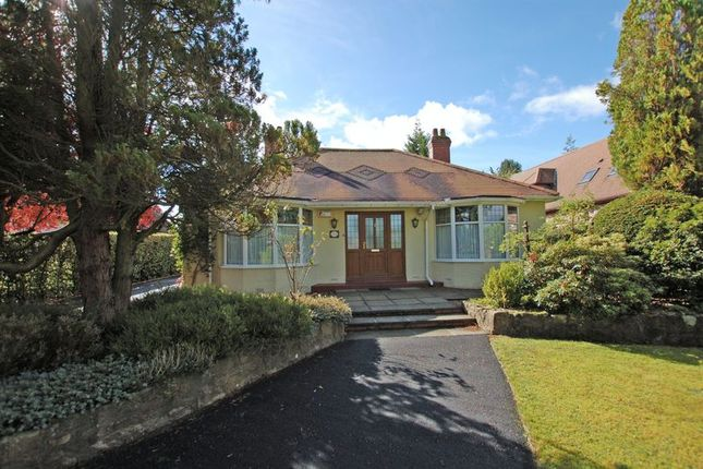 Thumbnail Bungalow for sale in Runnymede Road, Ponteland, Newcastle Upon Tyne