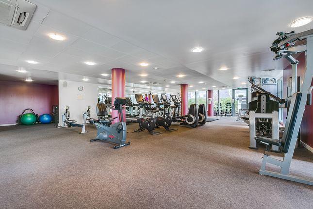 Gymnasium of London SW18