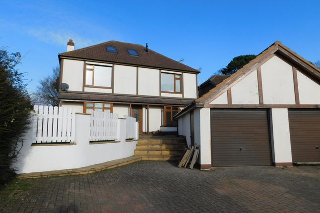 Thumbnail Detached house to rent in Stafford Lane, Colyford, Colyton