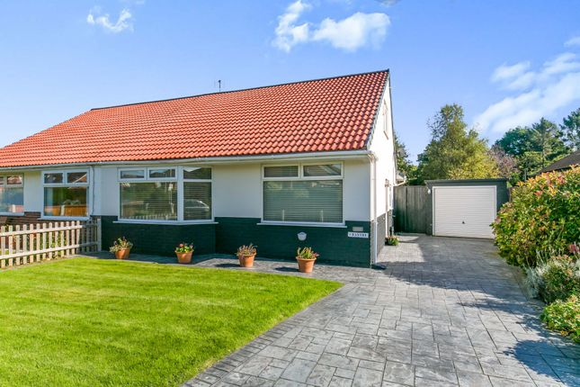 Thumbnail Bungalow for sale in Springfield Avenue, Newton, Wirral