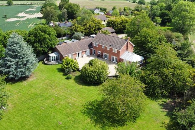 Thumbnail Equestrian property for sale in Harleston Road, Rushall, Diss