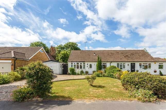 2 bed semi-detached bungalow for sale in Manor Grove, Fifield, Maidenhead, Berkshire