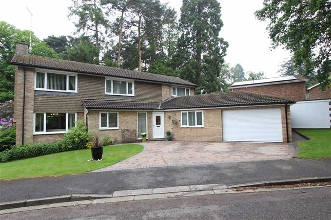 Thumbnail Detached house for sale in Taylors Ride, Leighton Buzzard