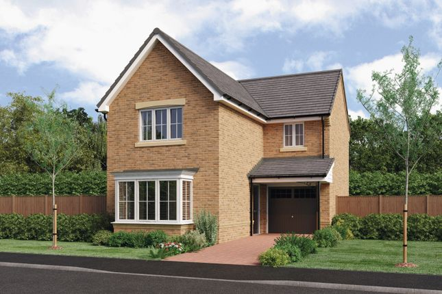 Thumbnail Detached house for sale in Cresswell Court, Hadston, Morpeth