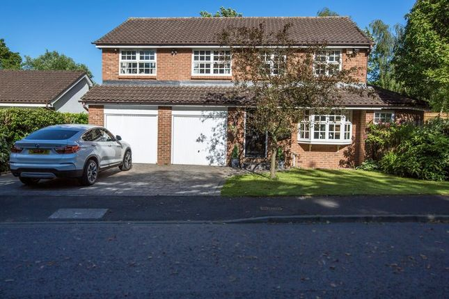 Thumbnail Detached house for sale in Willowdene, Forest Hall, Newcastle Upon Tyne