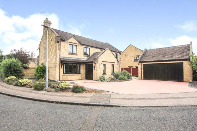 Thumbnail Detached house for sale in Trienna, Orton Longueville, Peterborough