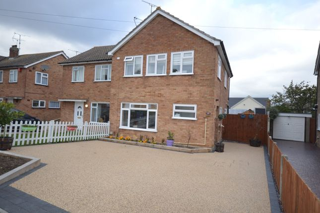 Thumbnail Semi-detached house for sale in Alder Drive, Chelmsford